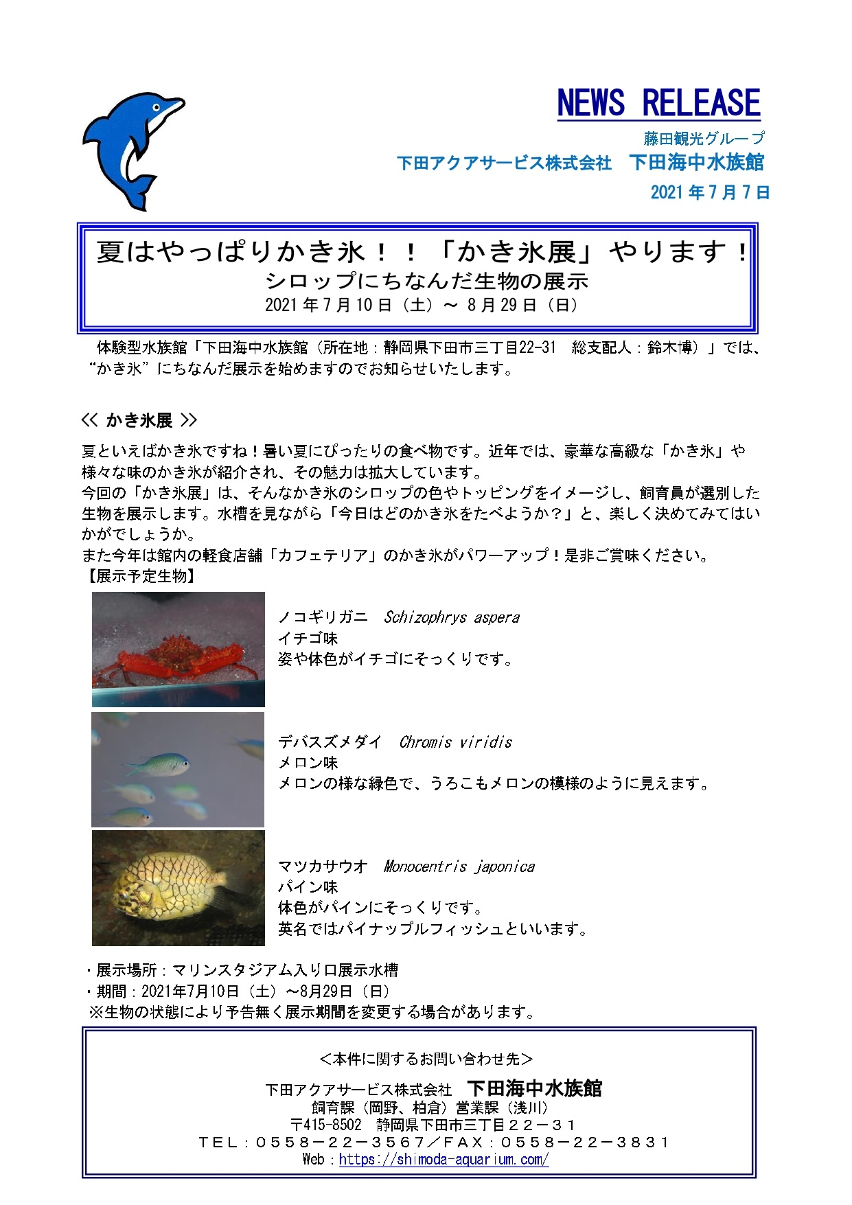 下田海中水族館より~「かき氷展」開催のお知らせ*